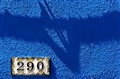 290, Blue house
