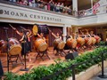 Taiko Center of the Pacific