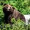 20150605_25051Canada Alaska