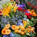 Flower parade Haarlem