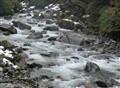 Mountain Stream Fiordland