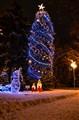 Public Christmas tree