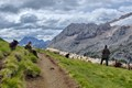 Dolomites, under the Marmolada