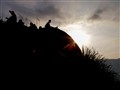 Broga Sunrise