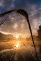 Small spider web with morning dew on Adda river, Northern Italy