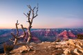 Hopi point twilight - Grand Canyon