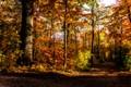 Kastellet efterår-02763-2-Edit-Edit-2