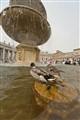 Duck-Bath