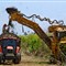 Mechanized harvesting of sugar cane