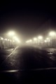 Streetlamps in the Fog