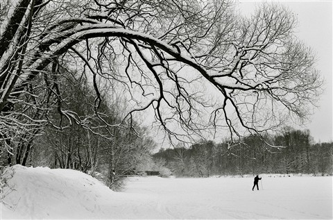A quiet winter's day