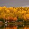 fall colours_65