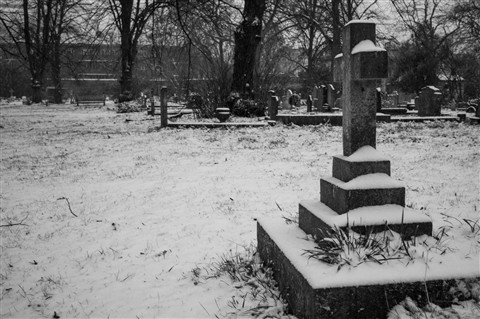 Brompton Cemetery in the Snow-1001414