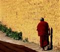 Tibetan Yellow