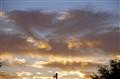 sunset 11-28-10