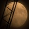 moon: The Super Moon (Dec 2017) with crane in foreground