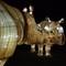 Illuminations at the Jardin des Plantes in Paris