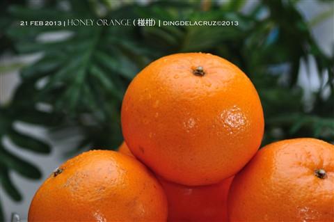 DAY 52  Honey Orange ( 椪柑)