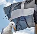 St Pirran Flag of Cornwall