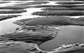 Muriwai sand