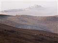 Volterra nebbie all'alba