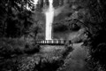 South Falls in B&W