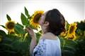kissing the sun(flower)