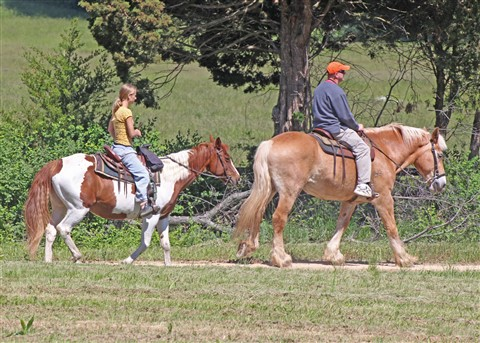 Gettysburg 2013 042_edited-1