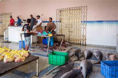 2012_04_Oman_084