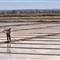 Varrer a praia de sal
