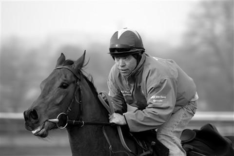 gallops bw