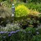 ABG Little fountain #3 (1 of 1)