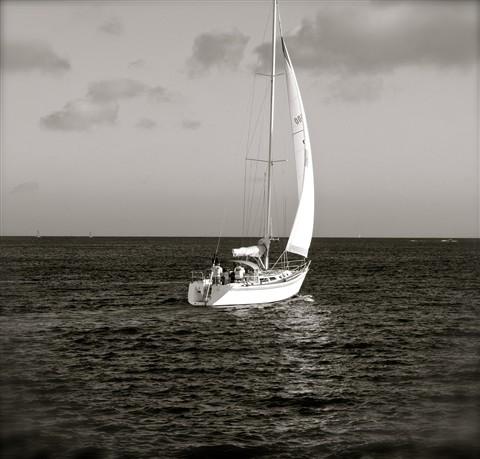 Sailboat_DSC09823