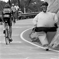 Sumo's Love Cycling