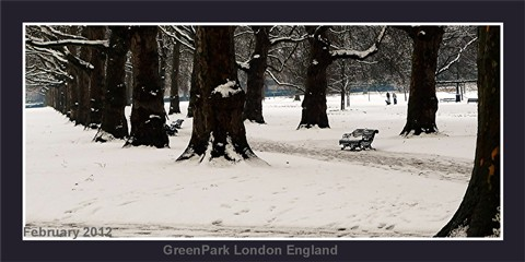 Greenpark Winter