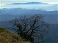 Towards Mt Buffalo 2