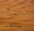 Morocco, merzouga desert