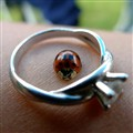 A ring fit for a true lady(bug)