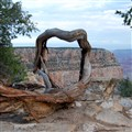Wood Frame at Grand Canyon