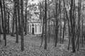 Autumn in Pushkin park, Vilnius