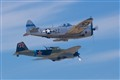 Panzer busters - IL-2 and P-47