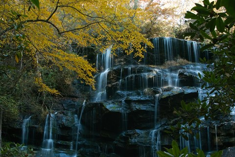 Yellow Branch Falls