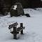 Sne på fælleden-0198-2