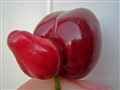 Well-endowed cherry ;-)