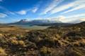 Perito Merino National Park