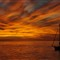 sunset 11-13-10 053