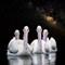 D30_7305white-pelicans-MWay