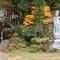 Hidden temple, Leica CL: