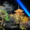 Japan, Kyoto Hanatouro Light Festival