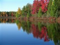 Elk Lake in the Fall